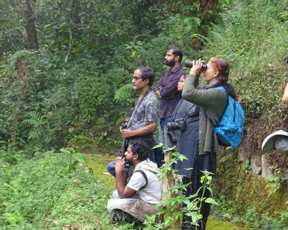 Birding at M. S. Swaminathan Botanical Garden