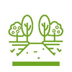 Know the Garden