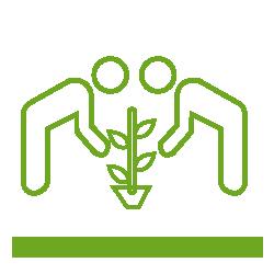 Programmes & Services