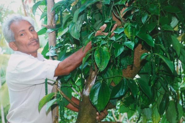 A. Balakrishnan