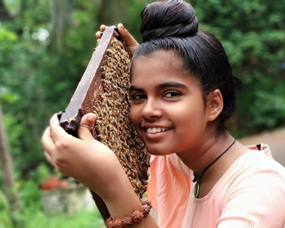 Award-Winning Apiculture Culture Technique by a School Student for domesticating Little Bees