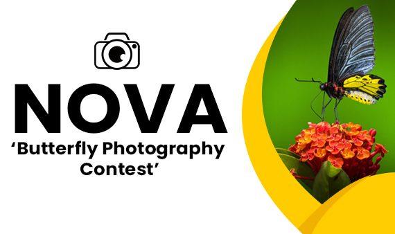 NOVA Butterfly Photography Contest