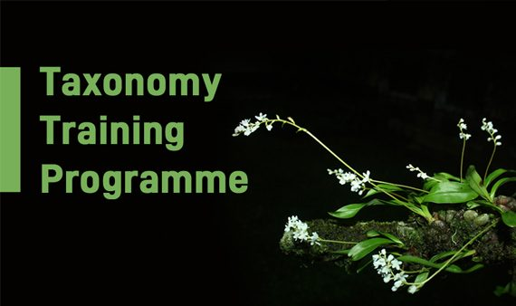 Taxonomy Training Programme