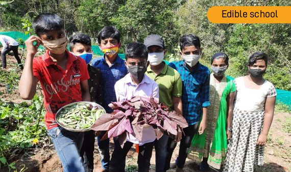 Edible School Children celebrated harvesting